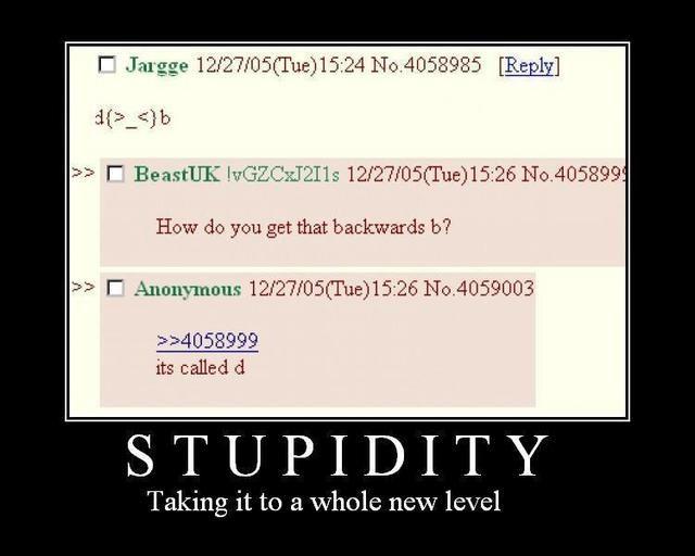 stupidy.jpg